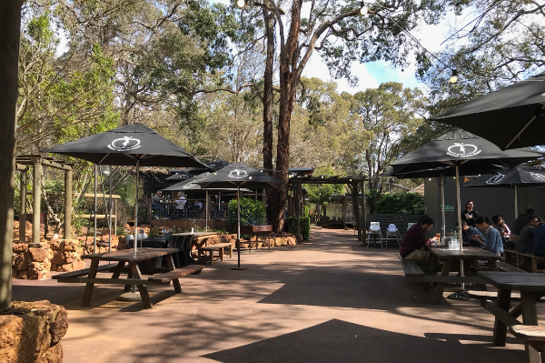 Slice of Perth – the hills are alive