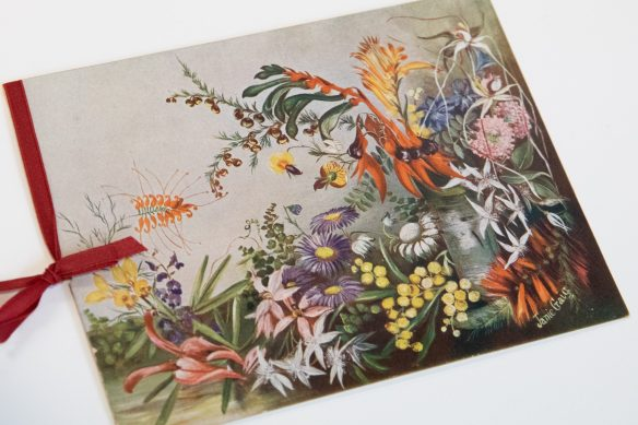 Reflecting on WA's wildflower heritage