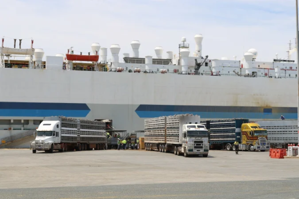 Sheep ship being loaded in Fremantle