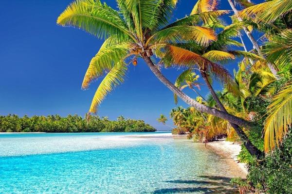 Grumpy takes us to an island paradise