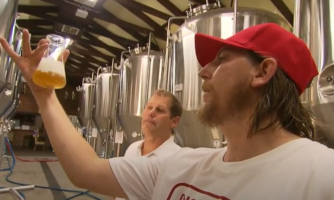 Dingo Flour Lager blooms just in time for summer