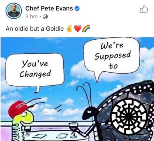 What's the worst part of Pete Evans' latest gaffe?