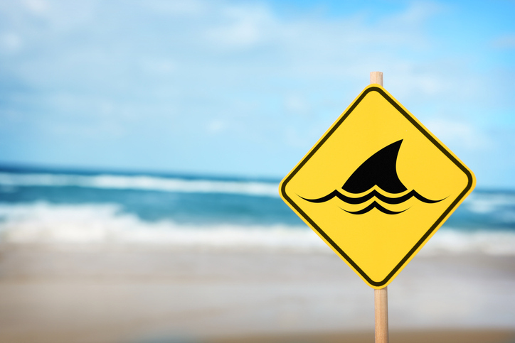 Article image for Young boy attacked by shark at WA tourism hotspot