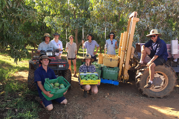 Article image for High School students roll up their sleeves to help WA farmer