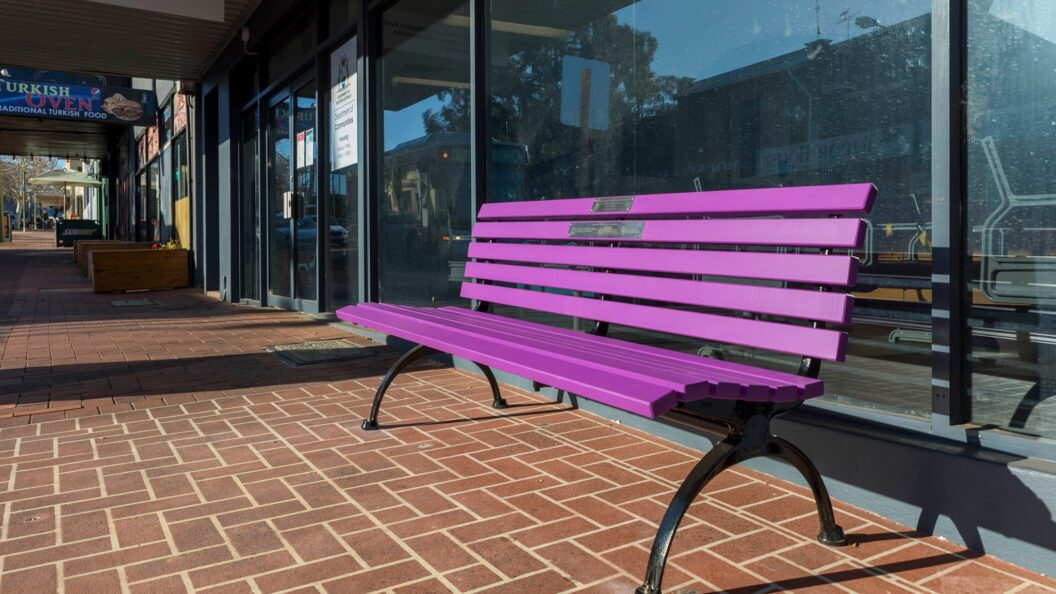 The Purple Bench Project making a stand against domestic violence