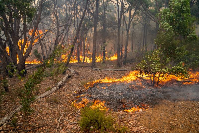 Article image for PERTH BUSHFIRES   Generous West Aussies warned of donation scams