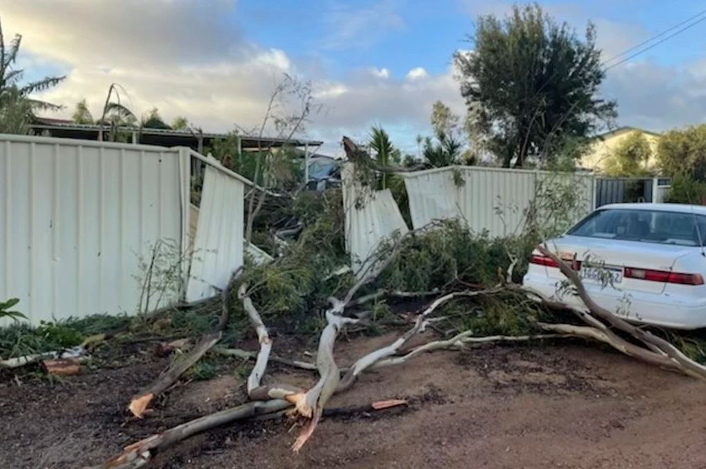 Article image for Long road to recovery for cyclone victims as builders experience skills shortage