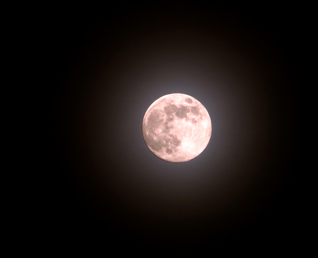 Article image for How to see the super 'pink' moon in WA tonight