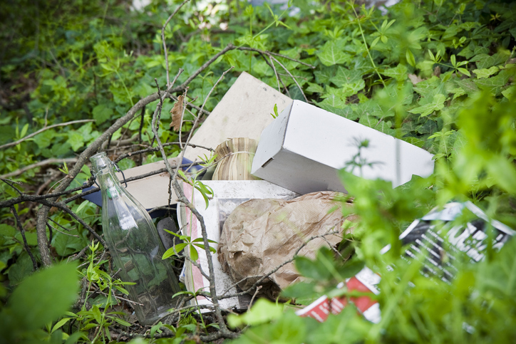 Article image for Calls to crackdown on illegal dumping as state loses $100 million a year