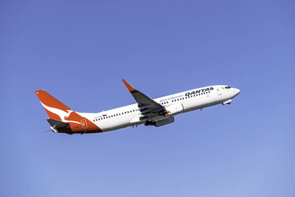 Article image for Qantas and Jetstar stand down 2500 workers