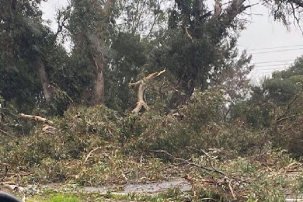 Article image for Lightning causes havoc in Perth's south-east