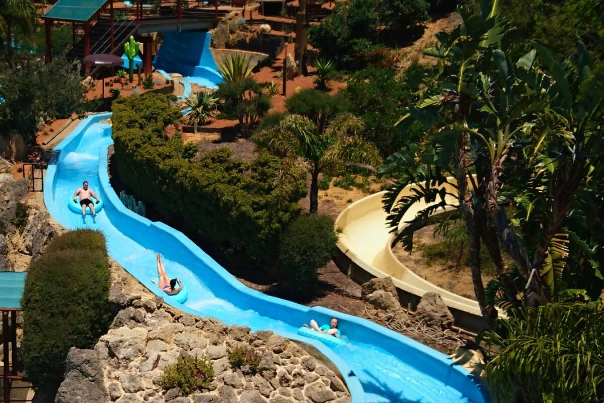 Article image for AALARA president defends Adventure World in wake of fat shaming allegations