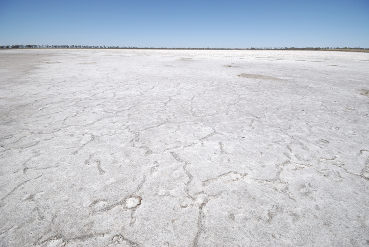 Article image for 'There is money in mud': Lake Grace smashes winter rainfall records