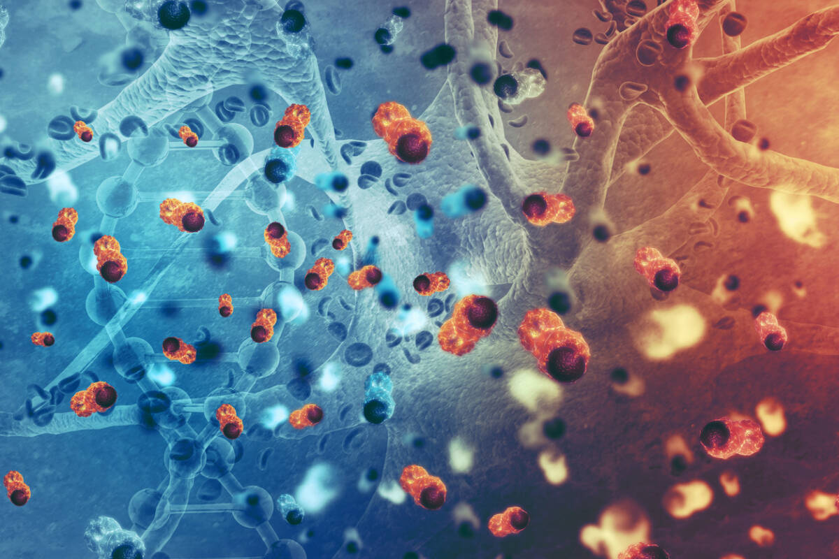 Article image for How a breakthrough cancer treatment 'tricks' the immune system