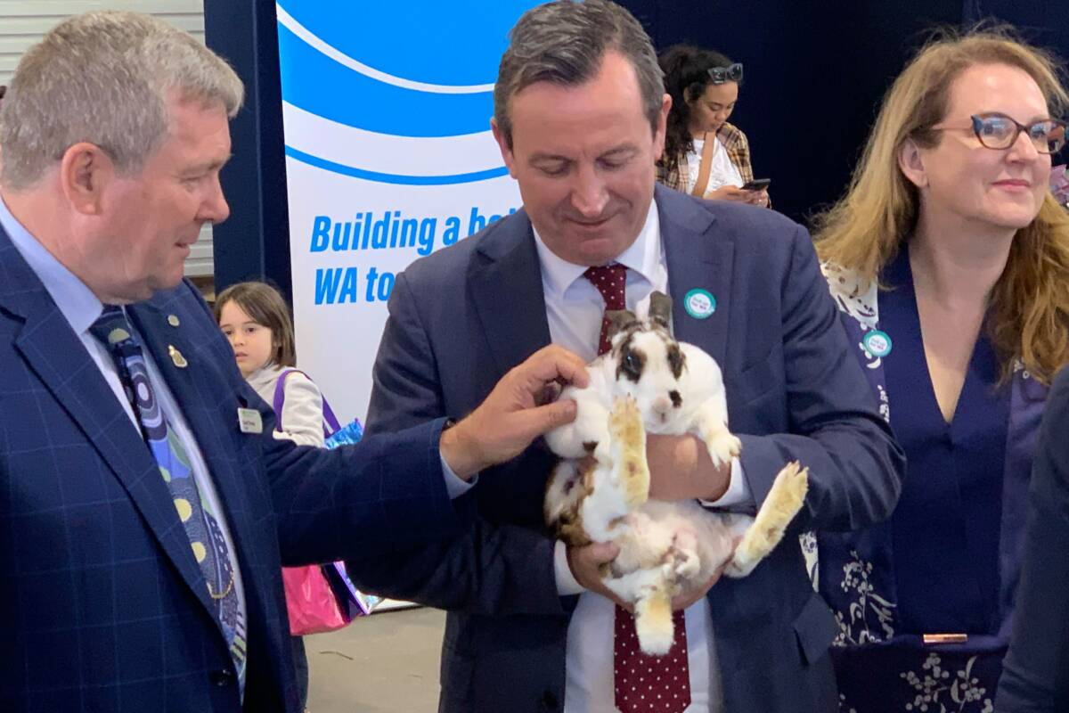 Article image for Royal Show to include walk-in clinic as WA's vaccination rate drops